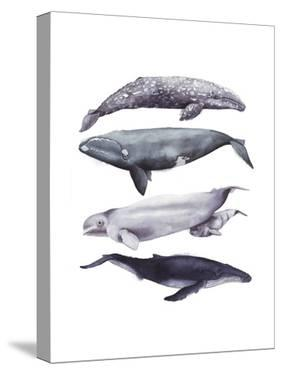 Whale Stack I by Grace Popp
