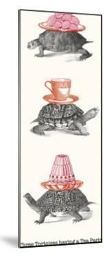 Tortoise Tea Party by Gwen Aspall