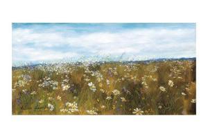 Wild Daisies by Hélène Léveillée