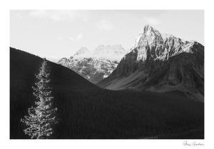 Mountain Pass by Irene Suchocki