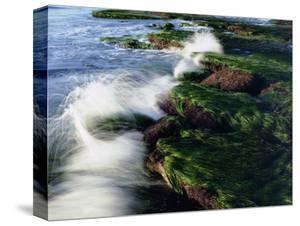 USA, California, San Diego. Waves Breaking on Tide Pools by Jaynes Gallery