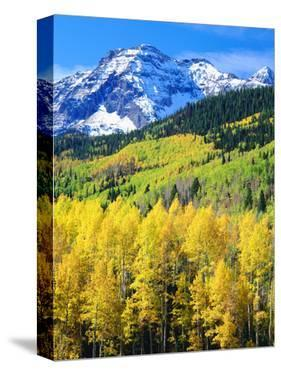 USA, Colorado, Rocky Mountains, Autumn in the Rockies by Jaynes Gallery