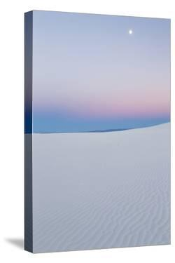 USA, New Mexico, White Sands National Monument. Moon over Desert by Jaynes Gallery