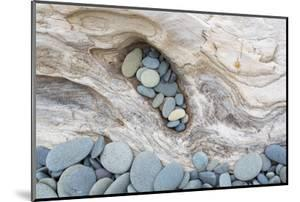 Washington, Olympic National Park. Beach Wood and Pebbles by Jaynes Gallery