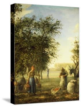 Apple Harvest by Jean-François Millet