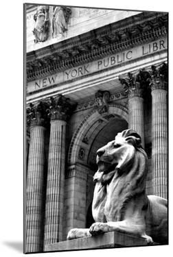 NY Public Library III by Jeff Pica