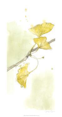 Ginkgo Triptych II by Jennifer Goldberger