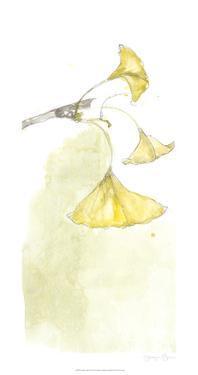 Ginkgo Triptych III by Jennifer Goldberger