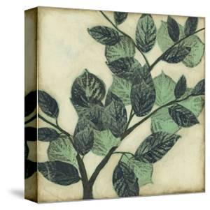 Graphic Leaves I by Jennifer Goldberger
