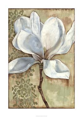 Magnolia Majesty I by Jennifer Goldberger