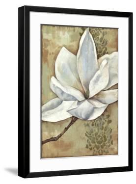 Magnolia Majesty II by Jennifer Goldberger