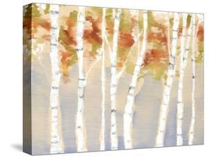 Swaying Birches II by Jennifer Goldberger