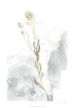 Wildflower Triptych III by Jennifer Goldberger