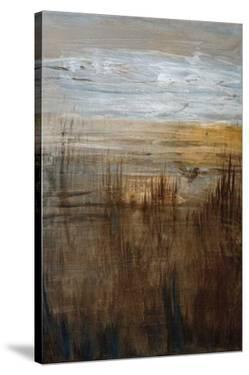 Coast by Jennifer Perlmutter