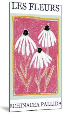 Les Fleurs - Pallida by Joelle Wehkamp