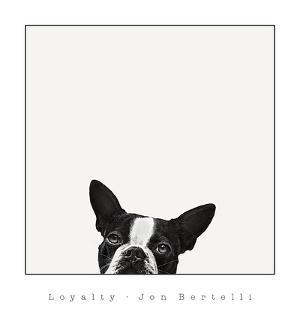 Loyalty by Jon Bertelli