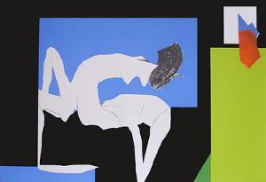 La chambre noire by Julio Pomar