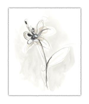 Neutral Floral Gesture IX by June Erica Vess