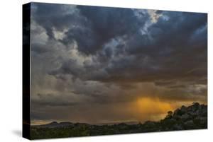 Sun Sets On Mopane Trees & Granite Boulders, Rain Storm Through Damaraland At The Hoada Campsite by Karine Aigner