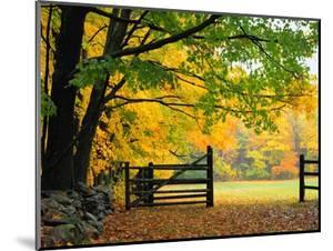 Fall Foliage Surrounds an Open Gate by Kathleen Brown