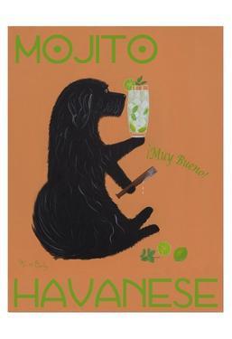 Havanese Mojito by Ken Bailey