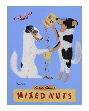Mixed Nuts - Australian Shepherds by Ken Bailey