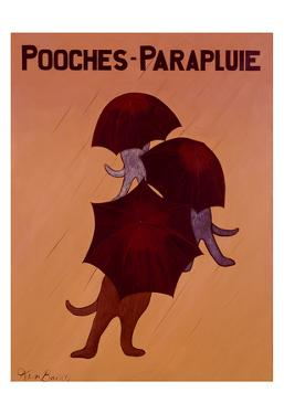 Pooches Parapluie by Ken Bailey