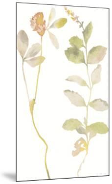 Flourish Verse by Kristine Hegre