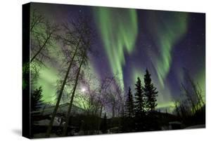 Aurora Borealis X by Larry Malvin