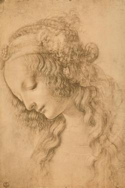 Study for the Face of the Virgin Mary of the Annunciation Now in the Louvre by Leonardo da Vinci