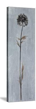 Cool Botanicals I by Liz Jardine