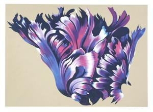Black Parrott Tulip by Lowell Blair Nesbitt