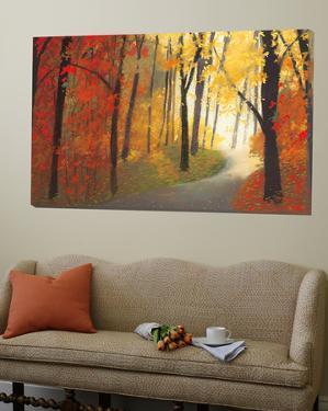 Autumn Road by Lynn Krause