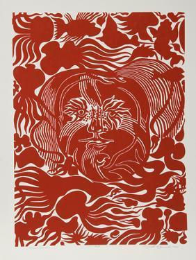 Marine Garden (Red) by Manuel Izqueirdo