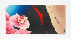 Romeo's Paradise by Michael Knigin