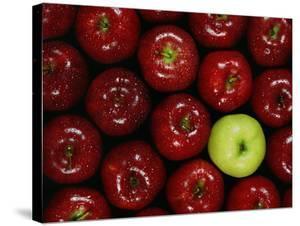 Apples #3 by Monte Nagler