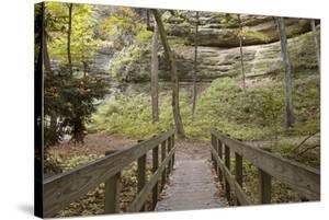 Bridge In The Canyon by Monte Nagler