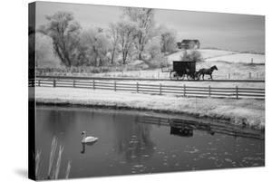 Buggy & Pond, Shipshewana, Indiana '13 by Monte Nagler