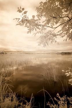 Peaceful Morning II by Monte Nagler