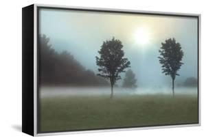 Two Trees & Sunburst by Monte Nagler