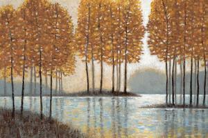 Amber Reflections by Norman Wyatt Jr.