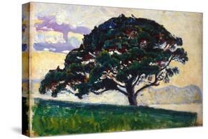 Large Pine, Saint-Tropez, 1892-1893 by Paul Signac