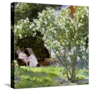 Roses, or the Artist's Wife in the Garden at Skagen, 1883 by Peder Severin Kryer