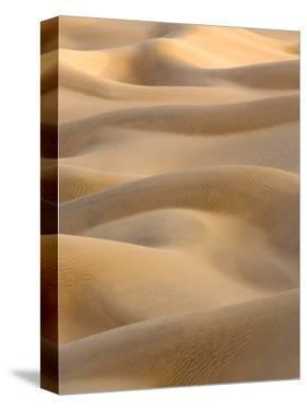 Abstract of Sand Dunes at Sunset, Thar Desert, Jaisalmer, Rajasthan, India by Philip Kramer