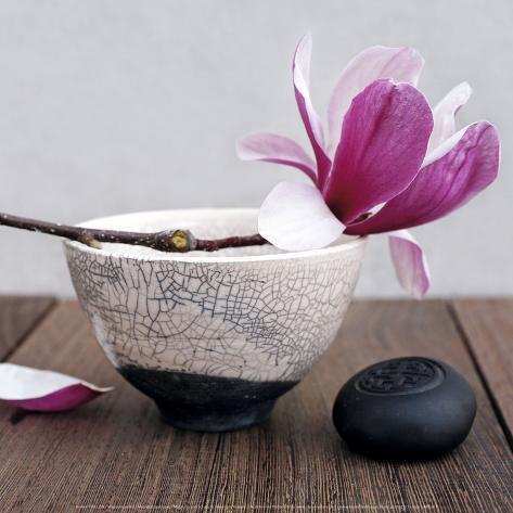 Magnolia and Bowl Kunsttrykk