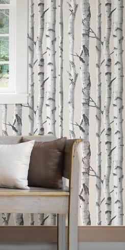 Birch Tree Peel & Stick Wallpaper Avtagbar tapet