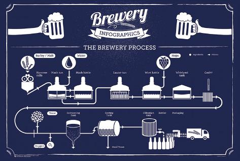 Brewery Infographic Plakat