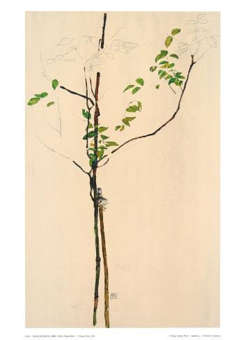 Young Tree Samlertryk