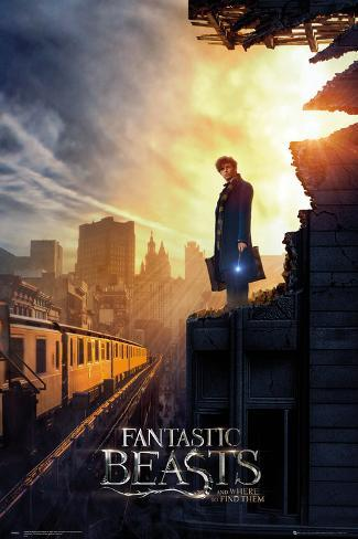 Fantastic Beasts- In The City One Sheet Plakat