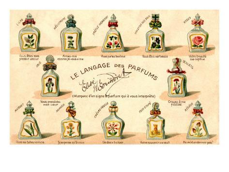 French Perfume Language Kunsttrykk